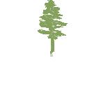 Jasper Lumber Company